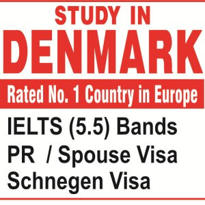 Overseas Study Abroad Programs In Punjab